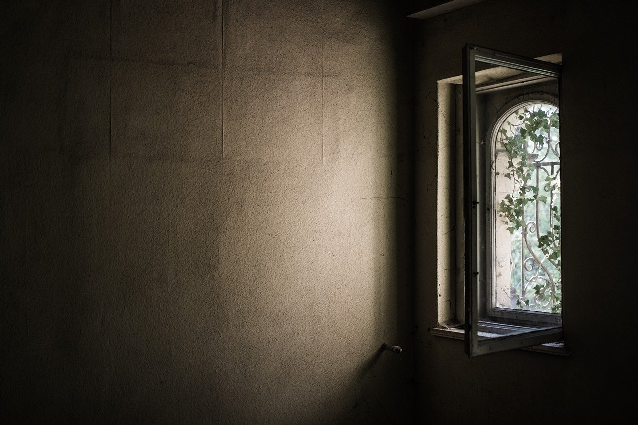 The Window in my Room- Poem on Nature Observation