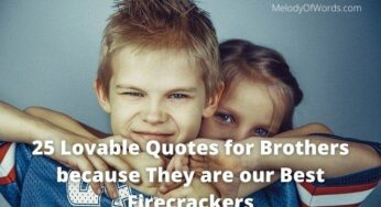 25 Lovable Quotes for Brother because He is our Best Firecracker